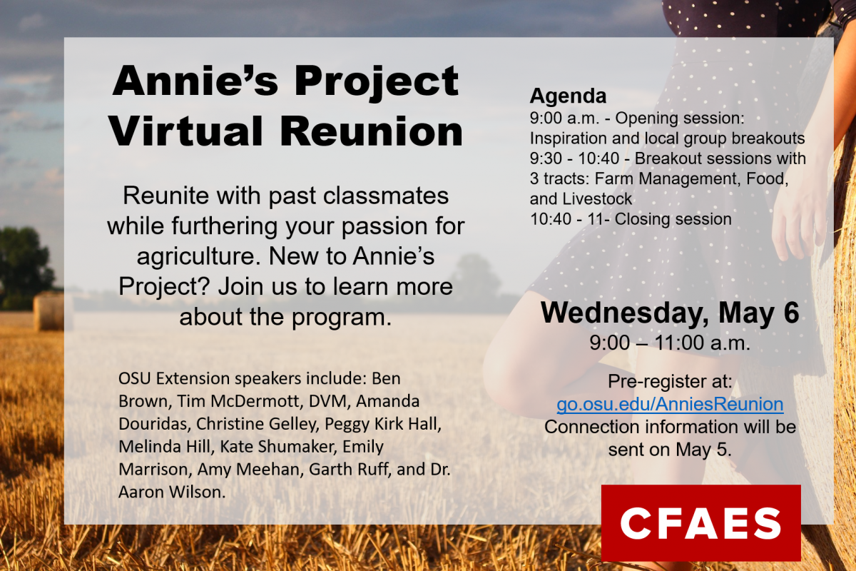 Annie's Project Virtual Reunion